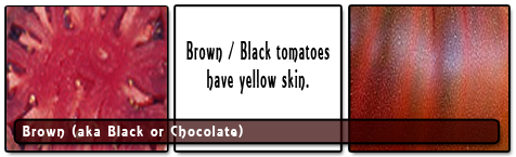 Brown, Black or Chocolate