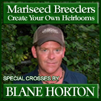 blane-horton-package