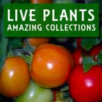 LIVE PLANT COLLECTIONS