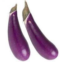 Slim Jim Heirloom Eggplants