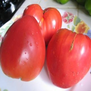 Yasha Yugoslavian Heirloom Tomato